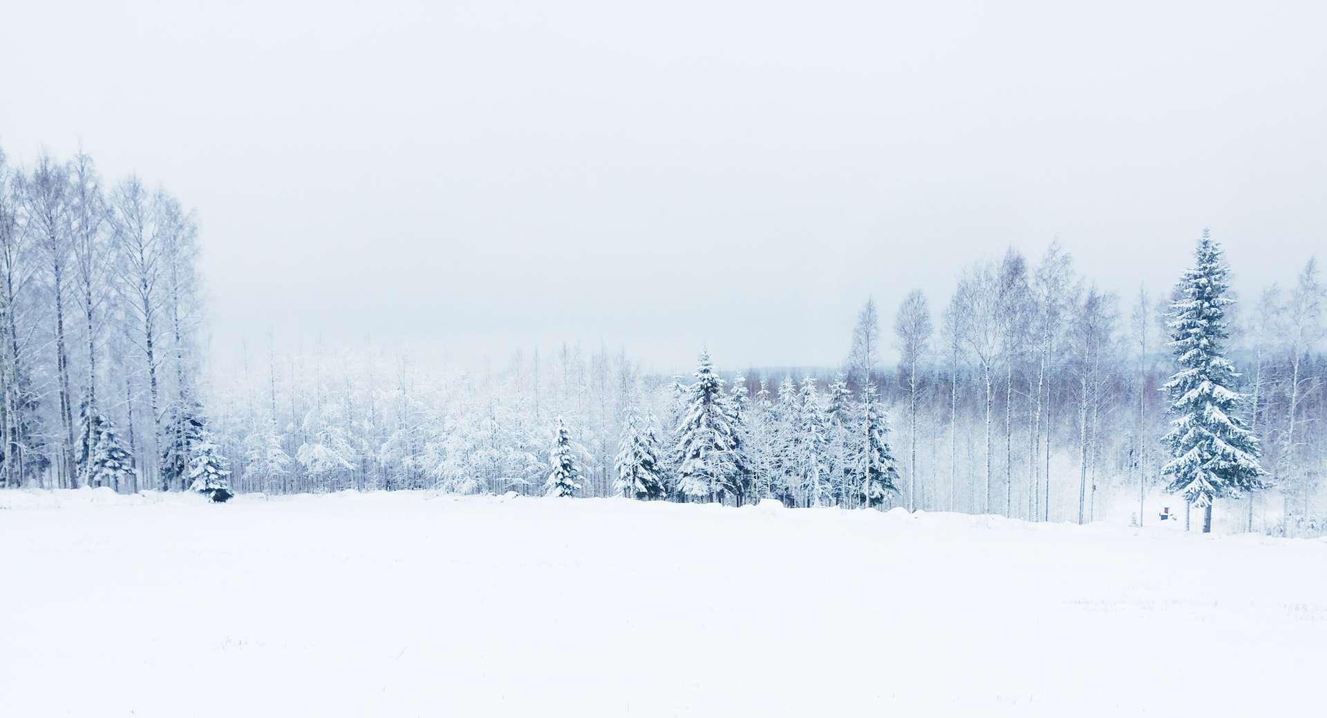 Pohjolan mäki talvella