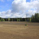 Muokattu pelto